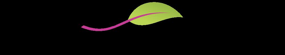 Aquafuchsia