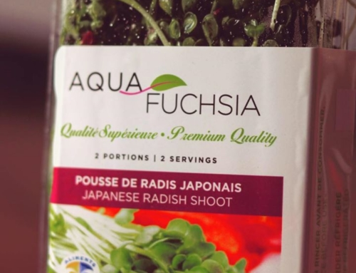 Les Aliments Aquafuchsia Foods Inc. updated their profile picture.